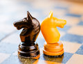 Black and white knights on background Royalty Free Stock Photo