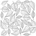 Black and white leafs. Vector Stock Photos