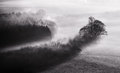 Black and white mist landscape in the morning over farmland Stock Photos