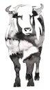 Black And White Monochrome Pai...