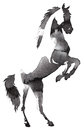 Black and white monochrome painting with water and ink draw horse illustration Royalty Free Stock Photo