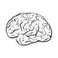 Black and white outline brain mark.