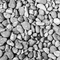 Black and white pebble background a gritty grey Stock Photos