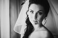 Black white photography beautiful young bride costs about stylish window Royalty Free Stock Photo