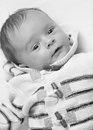 Black and white portrait of cute baby boy in knitted sweater Royalty Free Stock Photo