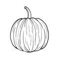 Black and White Pumpkin Illustration Royalty Free Stock Photo