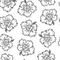 Black and white seamless pattern with outlined hibiscus Royalty Free Stock Photo