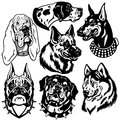 Black white set with dogs heads icons difference breeds and images Royalty Free Stock Photo