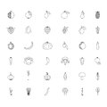 Black and white set fruits and vegetables line hand drawn icons