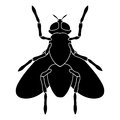 Black-and-white silhouette of a fly sitting