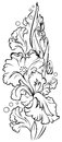 Black and white sketch of beautiful iris flower. Worksheet for children and adults for coloring.