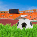 Black and white soccer ball in green grass on football stadium Stock Photo