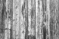 Black and white texture of wood old painted Royalty Free Stock Photos