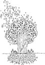 Black and white tree of love the with flying hearts visible roots digital illustration Stock Images