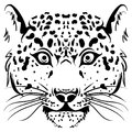 Black and white vector sketch leopard face Royalty Free Stock Photo