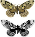 Black and yellow butterflies isolated on white Royalty Free Stock Photos