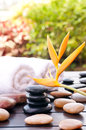 Black zen stones outdoor spa concept Royalty Free Stock Images
