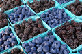Blackberries and blueberries at farmers market. Royalty Free Stock Photos