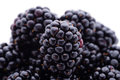 Blackberries fruits and vegetables group of fresh close up shot Royalty Free Stock Image