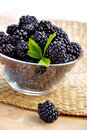 Blackberries in a glass bowl Royalty Free Stock Photo