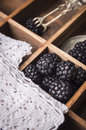 Blackberries in old wooden box vintage Stock Photography