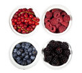 Black & blue berries, redcurrants, red raspberries Royalty Free Stock Photo