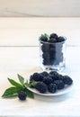 Blackberries - wild berry Royalty Free Stock Photo