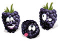 Blackberry cartoon Stock Images