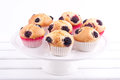 Blackberry muffins Royalty Free Stock Photos