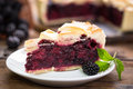 Blackberry pie Royalty Free Stock Photo