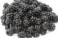 Blackberry ripe and fresh blackberries isolated on white background Stock Image