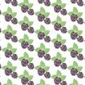 Blackberry Vintage pattern Royalty Free Stock Photo