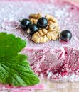 Blackcurrant ice cream texture with leaf Royalty Free Stock Images