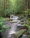 Blackwater River-West Virginia Royalty Free Stock Photo