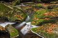 Blackwater waterfall cascade with autumn foliage colors Stock Images
