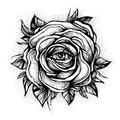 Blackwork tattoo flash. Rose flower. Highly detailed vector illustration  on white. Tattoo design, mystic symbol Royalty Free Stock Photo