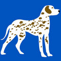 Blanching with spot dog on turn blue background Stock Images