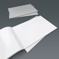 Blank brochure or catalog opened with silver cover and glossy sheets and a pile render Stock Image