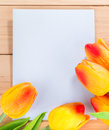 Blank Envelope and Tulips Royalty Free Stock Photo