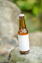 Blank Label Beer Bottle on Rock Royalty Free Stock Photo