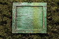 Blank old square wooden frame on moss background Royalty Free Stock Photo