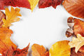 Blank paper with autumn leaves frame and acorns Royalty Free Stock Image