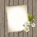 Blank paper with blossoming cherry branch on wooden background vector illustration Stock Photo