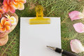 Blank paper note and pen with flowers and green leaf Royalty Free Stock Photo