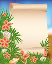 Blank paper scroll on summer tropical background illustration Stock Photos