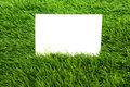 Blank paper shot over green grass Stock Image