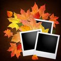 Blank photo frame with autumn leaves over brown background Stock Photos