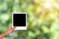 Blank photo frame for nature concept mockup Royalty Free Stock Photo
