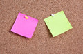 Blank post it on corkboard macro Royalty Free Stock Image