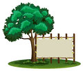 Blank sign beside the tree Royalty Free Stock Photo